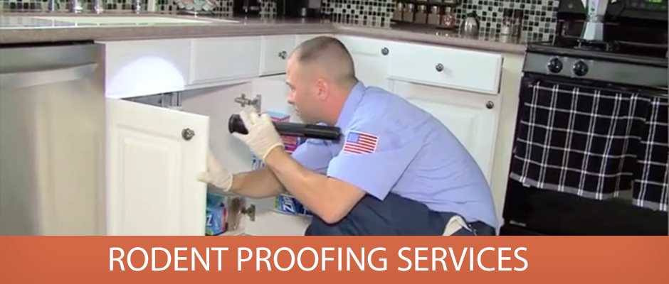 Rodent Proofing Services